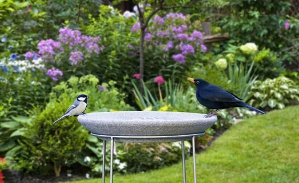 Set Vogeltränke Granicium® mit Ständer