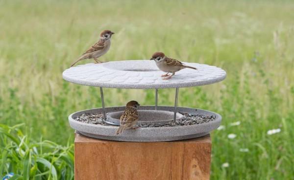 Denk Futterhaus Granicium® - Vögel füttern und beobachten