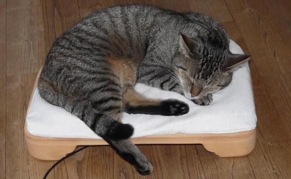 Minkas-Kachelofen das elektrisch beheizte Katzenbett